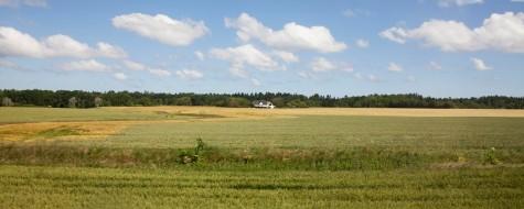 Danish Countryside