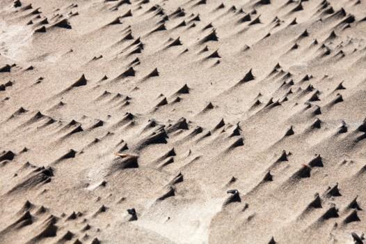 Dunes Color