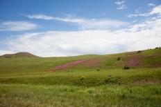 Амарбаясгалант Color Hills
