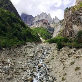 Los Perros Grey stream