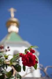 Абрау-Дюрсо Храм Flower