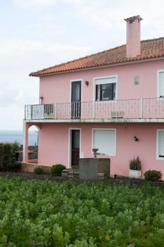 Faial São Pedro Pink Green