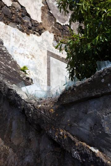São Miguel Fajã de Baixo Plantacão de Ananases Wall