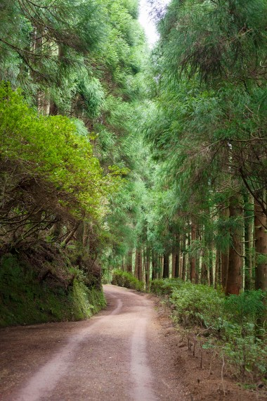 São Miguel Lagoa das Empadadas Trail