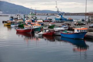 São Miguel Ponta Delgada Orange Boats