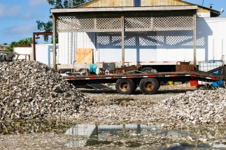 Apalachicola Oyster Mounds