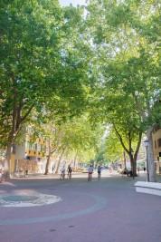 Békéscaba Street