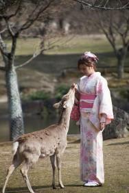 鹿園 Girl Feeding Deer