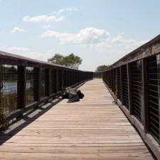 Gator Boardwalk