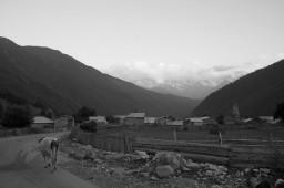 Mazeri View