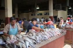 Mercado Campeche