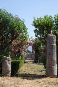 Pompeii Casa del Fauno perhaps