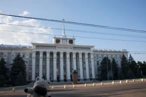 Zebra Dom Sovietov