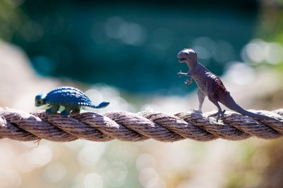 Dinosaurs Rope