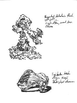 Green Sketchbook 5