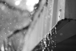 Rainsicles