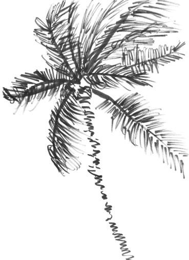 Republica Dominicana 24