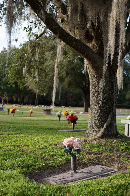 Grave and tree