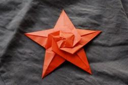 04 Starfish