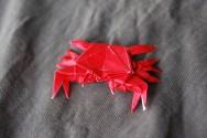 22 Crab